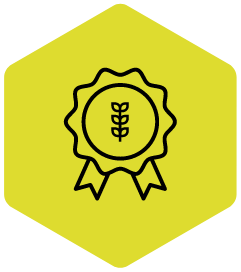 Project Category